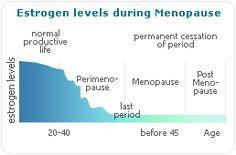 Estrogen Overview