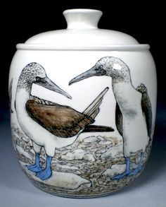 Blue Footed Boobies Jar by Nan Hamilton