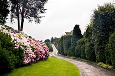 Villa di Delizia | Eupilio #lakecomoville
