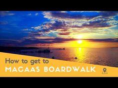 Macaas Boardwalk in Tubigon, Bohol - YouTube Mangrove Forest, Bohol, Philippines, River, Island, Youtube, Islands, Youtubers, Rivers