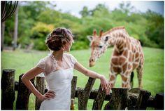 Giraffe wedding | Image by Ludivine B