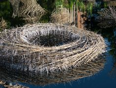 Incredible Bamboo Sculptures at Denver Botanic Gardens
