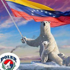 Nicola — Orgullo nacional #Polar #Cerveza #Arepa #HarinaPan