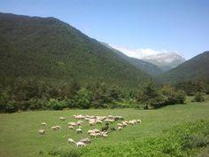 Al fondo la Peña Ezcaurre,Valles Occidentales en el Pirineo Aragonés.