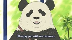 Only for the Panda