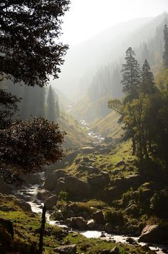 Tips, Tricks, And Techniques For The Best Camping Experience Nature Landscape, Fantasy Landscape, Forest Landscape, Beautiful World, Beautiful Places, Landscape Photography, Nature Photography, Places To Travel, Places To Visit