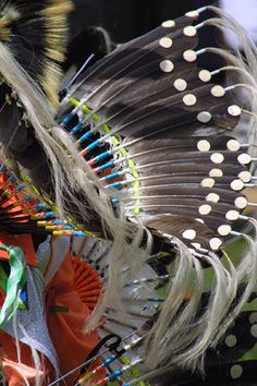 First Nations fancy dress made with real feathers.
