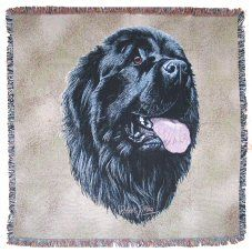 Pure Country Weavers Newfoundland by Robert May Dog Lap Square Blanket Throw Woven from Cotton - Made in The USA Bolster Cushions, Dog Pillows, Tapestry Bag, Rough Collie, Reclaimed Wood Furniture, Square Blanket, Great Pyrenees, Beige Background, Dog Portraits