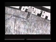 ▶ LA MEMORIA DEI CANI - YouTube