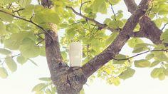 Pour fêter le printemps, je vous propose aujourd'hui d'alléger la recette de votre déodorant. Plus frais tout en étant aussi efficace, on oublie l'huile de coco pour faire place a…