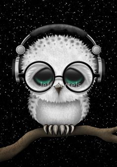 Baby Owl Dj with Headphones and Glasses | Jeff Bartels