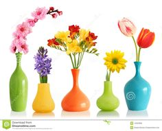 Spring flowers in vases. Colorful spring flowers in bright vases isolated on whi , Flower Vase Design, Flower Vases, Vase Centerpieces, Baby Shower Centerpieces, Bright Flowers, Spring Flowers, Fresh Flowers, Rainbow Flowers, Pastel Color Wallpaper