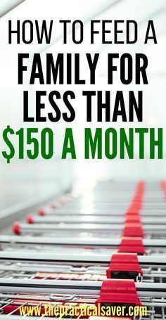 Looking to reduce your food budget? Tired of not knowing what to do to slash…