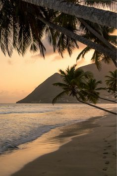 hawaii sunset sunrises / sunrises in hawaii ` sunset beach hawaii sunrises ` koko head hawaii sunrises ` hawaiian sunrises ` hawaii sunset sunrises Nature Aesthetic, Beach Aesthetic, Travel Aesthetic, Beautiful World, Beautiful Places, Sunset Wallpaper, Beach Landscape, Dream Vacations, Aesthetic Pictures