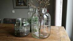 Cactussen in glazen potten