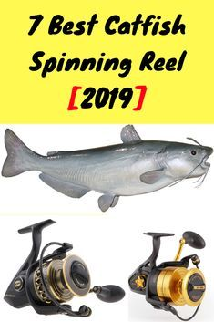 """Orvis Fly Fishing Rod Outdoor Sports Trout Vinyl Decal Sticker Window Yellow 7/"""""""