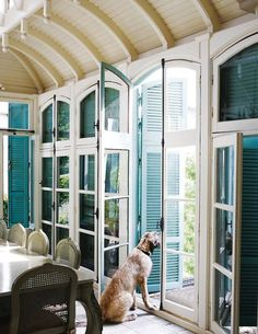 I adore these French doors and turquoise shutters! Plus, a cute puppy!