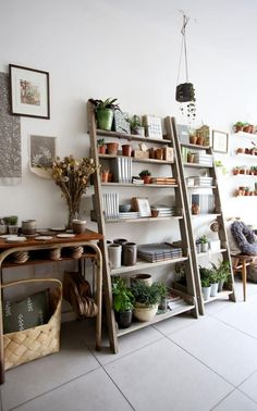 Article: Vertical indoor gardens part of the hot trend in small indoor gardens.  Inside Angela Maynard's shop Botany, on Chatsworth Road