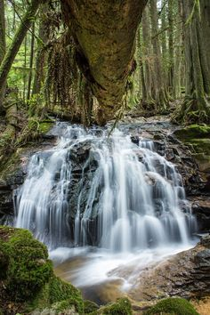 A waterfall at Cliff Gilker Park on BC's Sunshine Coast. Backpacking Canada, Canada Travel, Get Outdoors, The Great Outdoors, Visit Canada, Canada Canada, Canada Trip, West Coast Canada, Sunshine Coast Bc