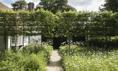 Pleached crabapple trees, a formal touch, screen the gatehouse entry. Imported from Belgium, the 12-year-old crabapple treesbloom with tiny pinkish white flowers in spring.