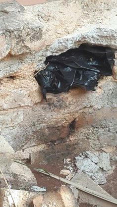 bee removal in Johannesburg,  removed bees in a hole in a wall, puffback street, centurion