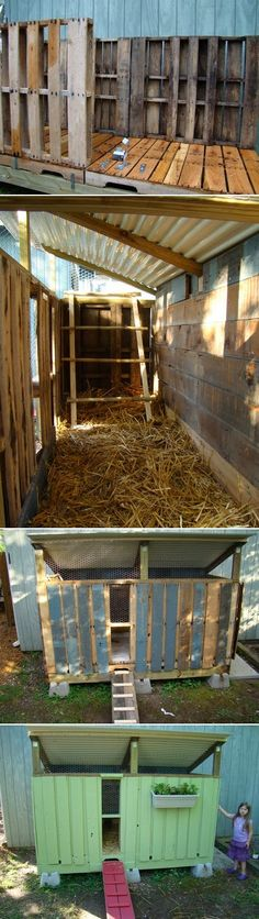 Chicken coop made from pallets. Post is for a chicken coop but I would use it as a do house!!! :) cheapest way to build one!