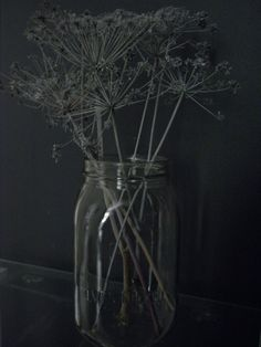 Valkoisella spraymaalilla maalatut kuivuneet koiranputket. Olympus Digital Camera, Glass Vase, Home Decor, Decoration Home, Room Decor, Home Interior Design, Home Decoration, Interior Design