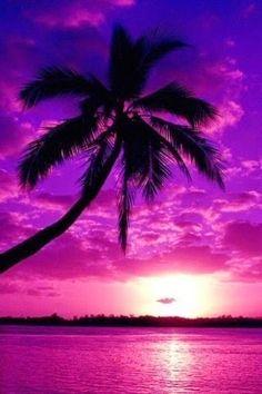 Paint Paradise With Wine and Canvas Las Vegas! Look Wallpaper, Cute Galaxy Wallpaper, Ocean Wallpaper, Summer Wallpaper, Purple Wallpaper, Scenery Wallpaper, Cute Wallpaper Backgrounds, Pretty Wallpapers, Beautiful Nature Wallpaper