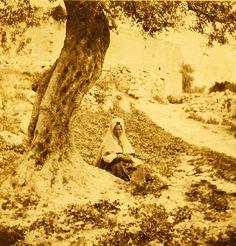Bethlehem-بيت لحم: Women of Bethlehem 100 - (late 19th, early 20th c.) 1882