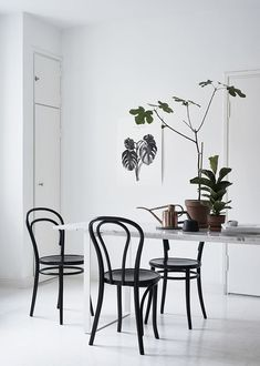 Beautiful minimal Dining Room with a little urban jungle