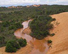 Dunas do Jalapão. Mistura de deserto com a vegetação do cerrado. Tocantins, Brasil.