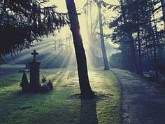Cemetery, Light, Glow, Sun, Sunshine
