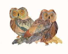And owls