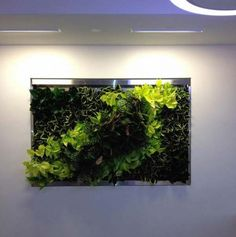 I could see this created into the shape of a frame with a fish tank in the middle. SO AMAZING!