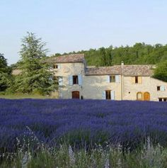 Typical Provencal French House #provence