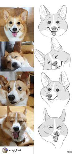 Cartoon Drawings, Animal Drawings, Cute Drawings, Character Drawing, Creature Design, Dog Art, Art Tutorials, Cute Art, Art Reference