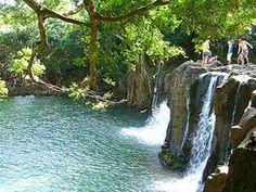 kipu falls, kauai Tim enjoyed swinging off this cliff, I enjoyed watching Kauai Vacation, Hawaii Honeymoon, Hawaii Travel, Vacation Destinations, Dream Vacations, Vacation Spots, Italy Vacation, Kauai Hawaii, Princeville Hawaii