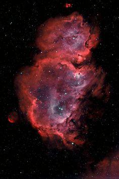 Soul Nebula-looks like a teddy bear