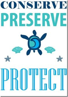 how you can conserve, preserve and protect our oceans