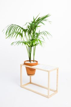The Side Table Frame Planter is an indoor planter and side table by Trey Jones Studio
