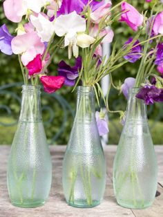 Use empty bottles for flower arranging Garden party ideas Vintage Garden Parties, Garden Party Decorations, Love Garden, Big Party, House Warming, Flower Arrangements, Glass Vase, Empty Bottles, Lights