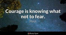 Courage is knowing what not to fear. - Plato #brainyquote #QOTD #courage #fear Brainy Quotes, Motivational Quotes, Inspirational Quotes, Famous Quotes, Best Quotes, Plato Quotes, Cake Quotes, Self Improvement Quotes, Courage Quotes