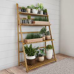 Indoor Plant Shelves, Garden Shelves, Indoor Plants, Indoor Outdoor, Shelves For Plants, Indoor Plant Wall, Outdoor Shelves, Outdoor Living, Indoor Gardening
