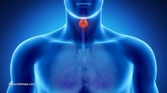 How to Reset Your Thyroid