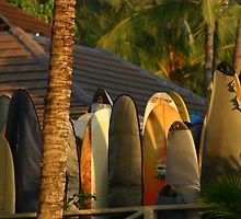 owlHouseINK is an independent artist creating amazing designs for great products such as t-shirts, stickers, posters, and phone cases. Owl House, Surfboards, Moana, Hawaii, Surfing, Wall Art, Photography, Life, Shopping