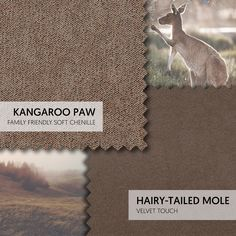 Ones to Swatch - Earthy browns are rich yet neutral. Kangaroo Paw (Family Friendly Soft Chenille) and Hairy-Tailed Mole (Velvet Touch) are naturally inspired hues that will add depth to your lounge. #theloungeco #swatch #swatches #fabric #brown #kangaroo #mole #velvet #chenille #sofa #upholstery