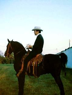 "Elvis Riding One Of His Tennessee Walkers ""Bear"""