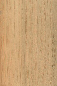 Kastanie   Furnier: Holzart, Kastanie, Blatt, hell, gräulich, grau, Laubholz, braun #Holzarten #Furniere #Holz