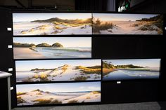 Douglas Reid Artist Wall, Nz Art, Come And See, Buy Tickets, New Zealand, Artists, Artist