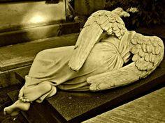 Cimitero Acattolico,Roma  Foto di Tracey Miniaci
